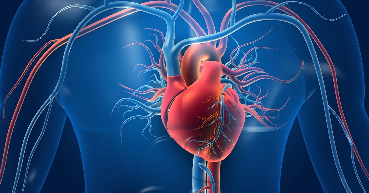 Aort Cerrahisi ve Anevrizmalar