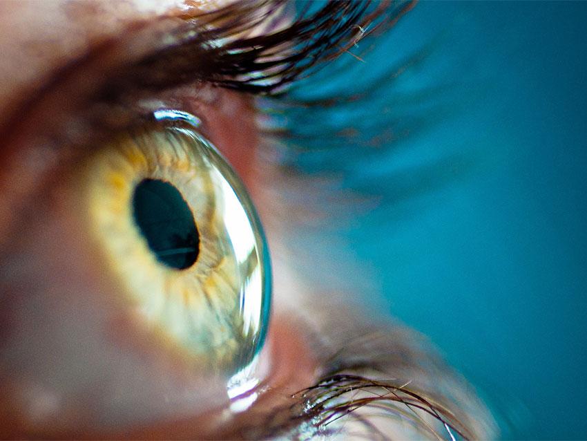 Retina Cerrahisi